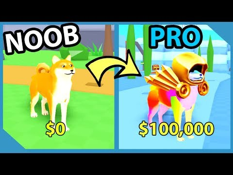 Noob To Pro! Legendary Dominus Hat! Richest Doge! – Roblox Doge Simulator