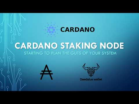 Cardano Mainnet Staking Build