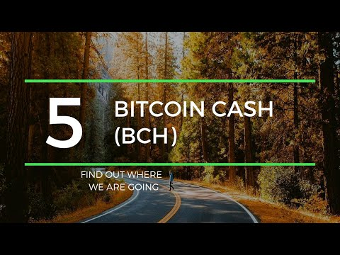 $291 Bitcoin Cash BCH Price Prediction (15 July 2019)