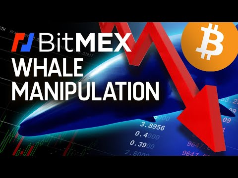 The Whale Who Started This CRASH!! Is BitMEX Involved!?