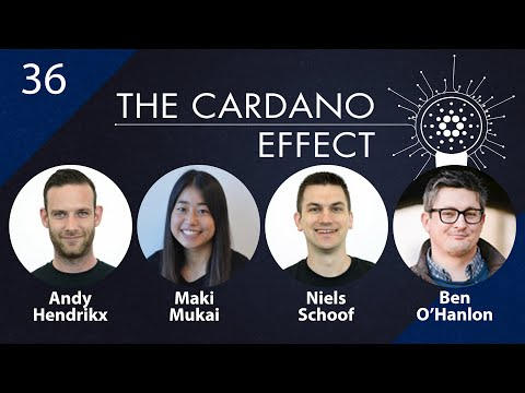 Cardano Foundation Community Managers | TCE 36