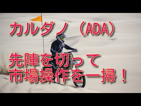カルダノ(ADA)はアルトコインのパイオニア!市場操作一掃に踏み出す!!