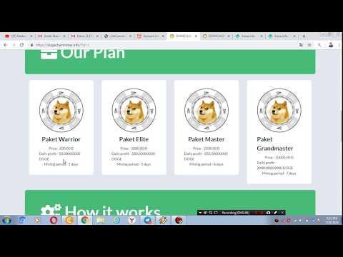 dogechain.info II MINING DOGE TERBARU