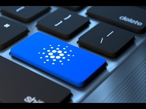 Cardano – Top 50 Crypto Valley Project; #3 'World's Biggest Protocol Project'