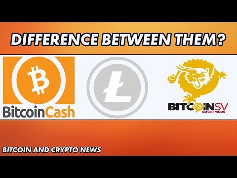 Bitcoin News:  Biggest Difference Between Bitcoin Cash, Bitcoin SV and Litecoin?