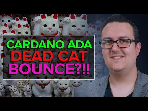 CARDANO ADA can this DEAD CAT Bounce? Price Analysis Here!!!