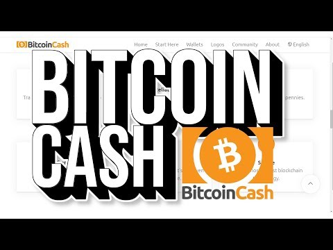 KRITIK an BITCOIN CASH!