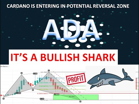 Cardano Is Forming Last Leg Of Shark |  ADA USD Is Moving To Potential Reversal Zone