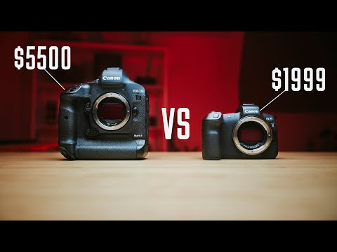 Canon 1DX2 VS EOS R – The end of the 1DX2 era?