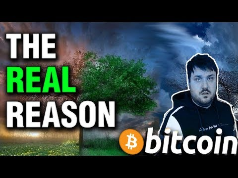 Real Reason for Bitcoin Maximalism – Crypto Meme Review