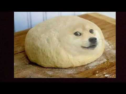Best Doge Memes(FUNNY)??????? Like and Subscribe