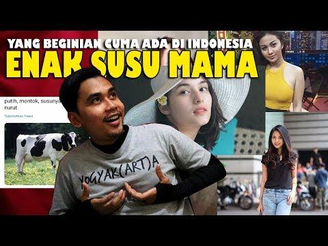 CUMA ADA DI NEGARA +62 INDONESIA LAWAK MANIA
