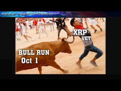 #XRP #VET BULL RUN OCT 1 2019… PWC Elwood. ( Crypto Millionaires Club ) Members Only