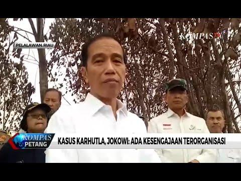 Kasus Karhutla, Jokowi: Ada Kesengajaan Terorganisasi