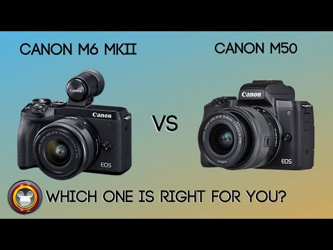 Canon EOS M6 mkii vs Canon EOS M50 – Which one is right for you?