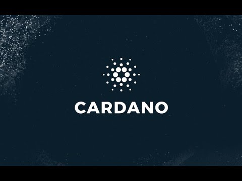 Cardano Shelley + Smart Contracts, Binance Delistings, Lightning Bug & Finding Crypto Treasure