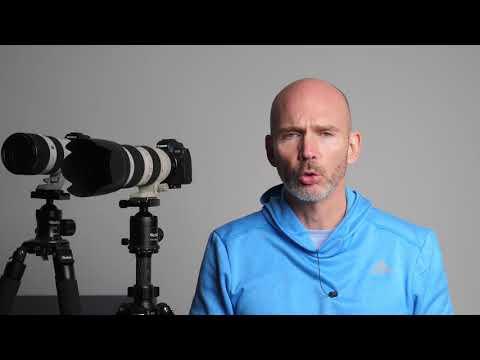 Gesichtserkennung Canon EOS R mit Firmware 1.4 gegen Sony A7R III