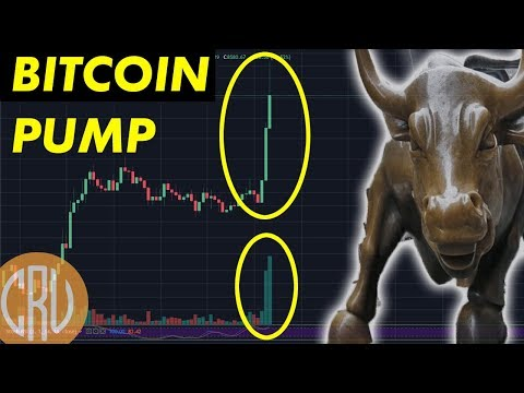 Bitcoin PUMP and Altcoins Rally  | Cryptocurrency News