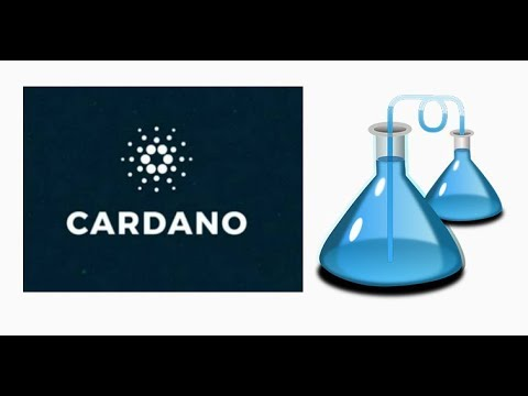 """Cardano and the """"scientific philosophy"""" for a crypto project: Yay or Nay?"""