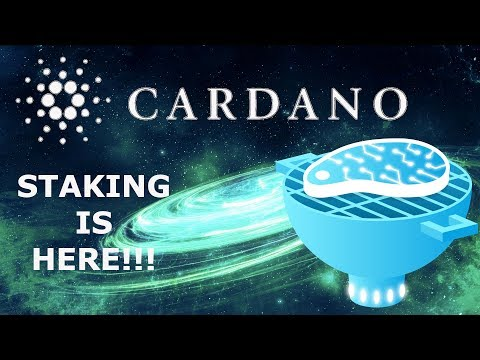 CARDANO ADA TESTNET STAKING IS HERE! MAINNET STAKING LATER THIS MONTH!