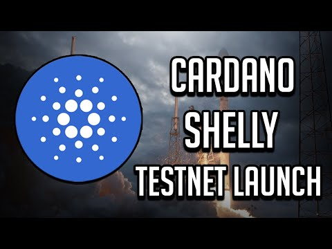 Cardano (ADA) Shelly Testnet – How High Will Price Go?