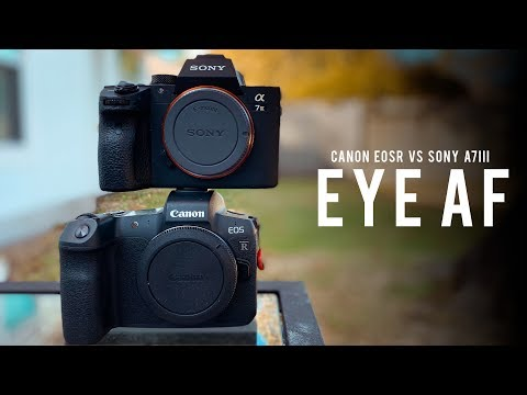 The King is Crowned! | Canon Eos R vs Sony a7III Eye AF Shoot-Off