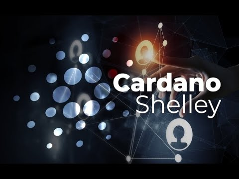 Cardano Ends ITN Week 1; Ethereum 2.0 UPDATES; VeChain Response to Incident