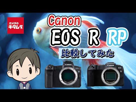【新旧カメラ比較】キヤノンのミラーレス一眼 EOS RとEOS  RPの違いとは!?