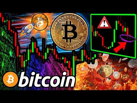 Why BITCOIN Has Most Likely BOTTOMED & HALVING is NOT Priced In! Best Evidence Yet?