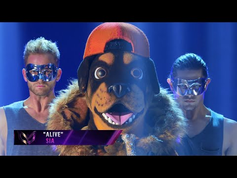 "Rottweiler sings ""Alive"" by Sia 