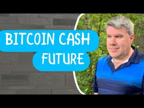 Bitcoin cash in the future