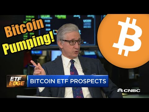 Bitcoin Price Exploding Past $8,800 as Bitcoin Options Go Live! + BSV Altcoin Pump
