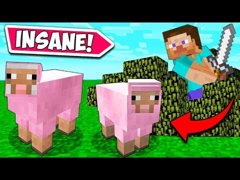 *RARE* PINK SHEEP HUNT!! – Minecraft Funny Moments and Fails! #1