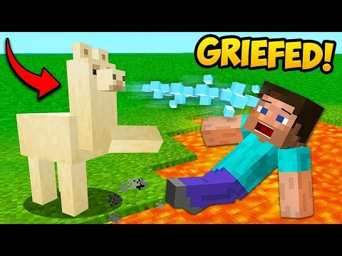 *GRIEFED* BY A KILLER LLAMA!! – Minecraft Funny Moments and Fails! | BCC Plus