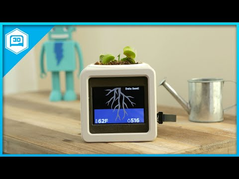 Smart IOT Pet Planter