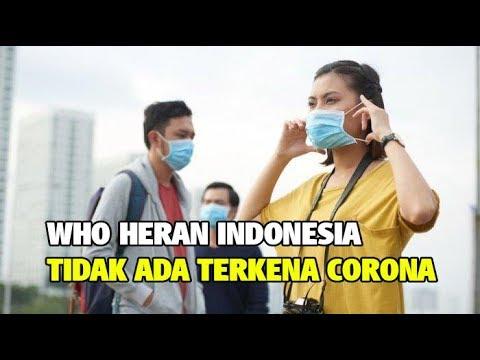 WHO Heran Indonesia Berpenduduk 270 Juta Belum ada Satupun Terkena Virus Corona