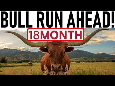 18 MONTH BULL RUN AHEAD! – RALLY JUST STARTED! – TRUMP POLICING CRYPTO! – PHANTOM MONEY PUMPING BTC!