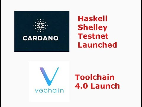 Cardano Rolls out Haskell, Vechain toolchain 4.0 launch, Livestream recap