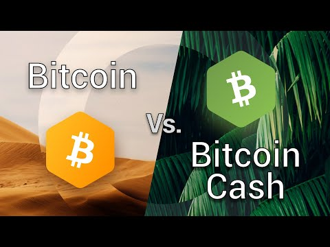 Bitcoin Cash vs Bitcoin (BCH vs BTC, Bitcoin fork) exodus wallet