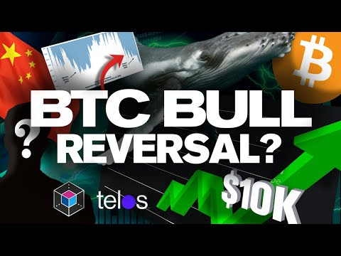 BITCOIN to Bounce! Why!? 10k BTC Whale Manipulation!