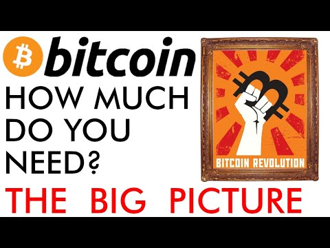 How Much Bitcoin Do You Need? The Big Price Picture [2020]