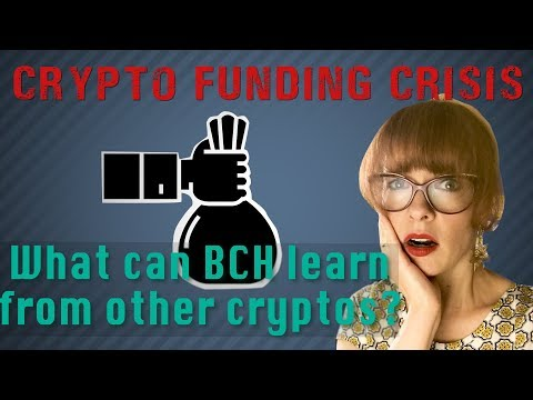Crypto funding crisis: Are some coins destined to die?