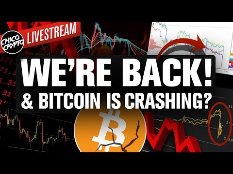 YouTube Ban of Chico Ends! Bitcoin Crash! What's Next?