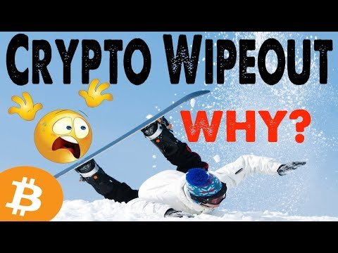 "WHY: CRYPTO MARKET WIPEOUT?  YOU'LL STILL GET RICH! (ZOOM OUT)  TOP 20 COIN ""OFF"" FOR 12 DAYS WTF?"