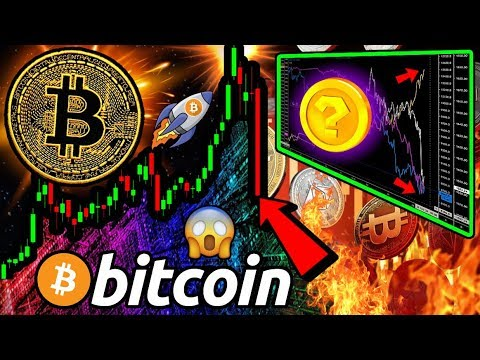 BITCOIN, Stocks & Gold DUMP!! But WHERE is the MONEY GOING? What Will Happen to BTC?