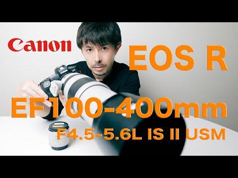 【Canon EOS R使用】EF100-400mm F4.5-5.6L IS II USM レビュー【200-800mmF9-11 運用解説】