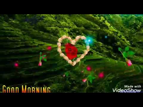 Good morning Tone flute by Rubit saikia… Dhemaji flute
