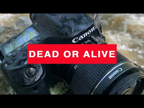 CANON EOS 80D update  DEAD or ALIVE ? 😳