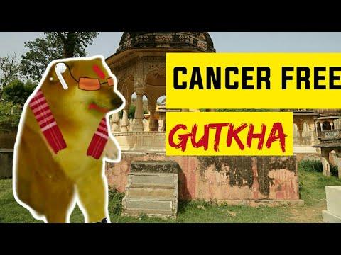 cancer free gutkha – thug doge | Rj purab