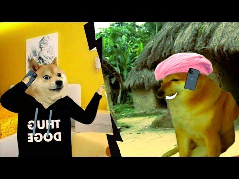 bakri ki deal – thug doge